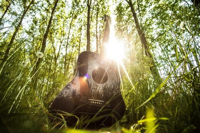 ibanez-gitarre-im-wald